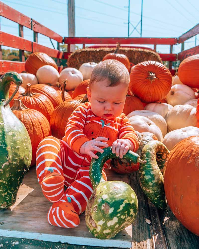 Baby in Pumpkin Filled Truck